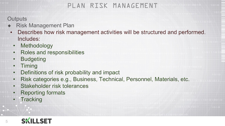 Which Of The Following Is An Output Of The Plan Risk Management